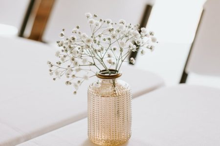 glass vase with white blooming flower